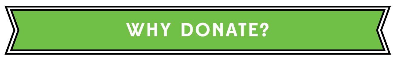whydonate_green_fullbanner_whitetext_110614
